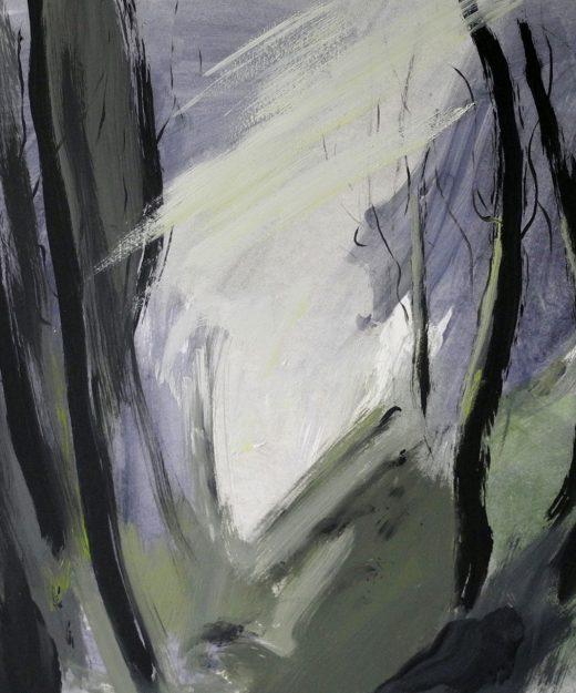 La luz del Bosque 08