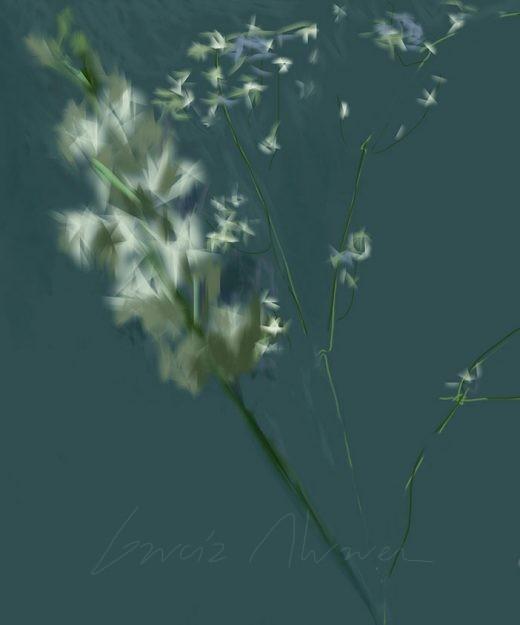 Flores 08