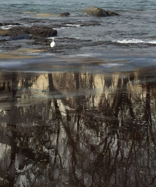 Overpainted Photographs 04