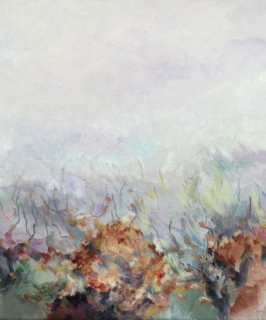 Viñedo otoño 10