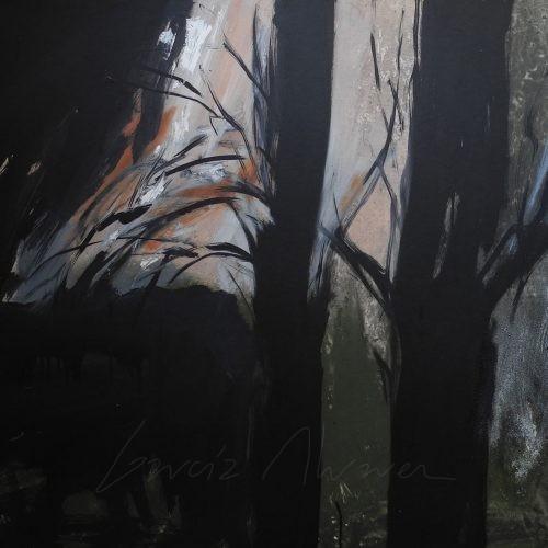 La luz del Bosque 03