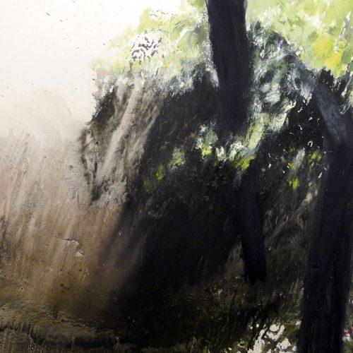 La luz del Bosque 04