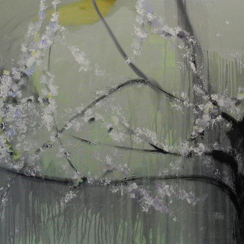 Cerezo-en-Flor-15