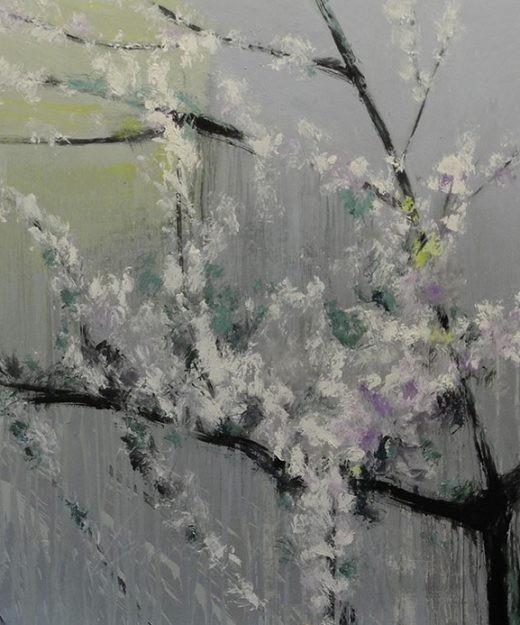 Cerezo-en-Flor-16
