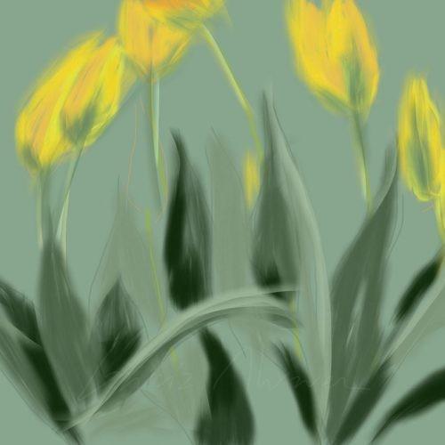 Flores 03