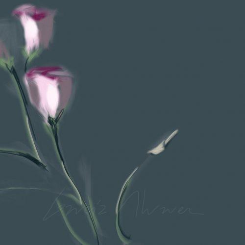 Flores 04