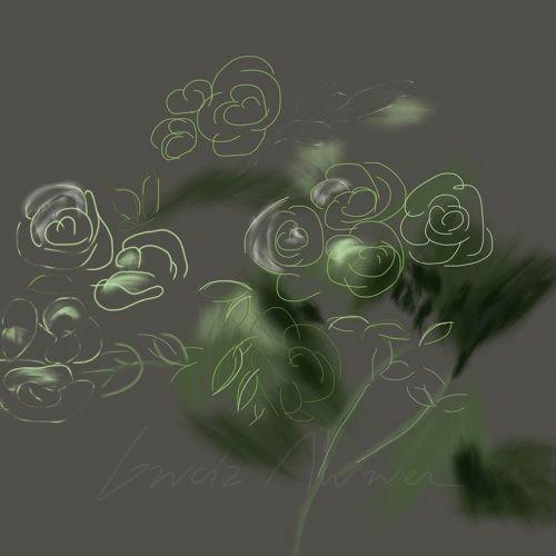 Flores 06