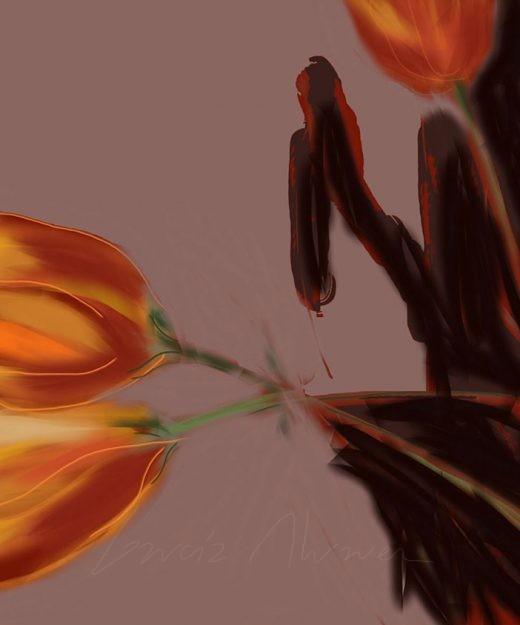 Flores 07