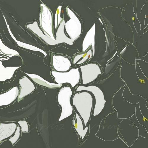 Flores 14