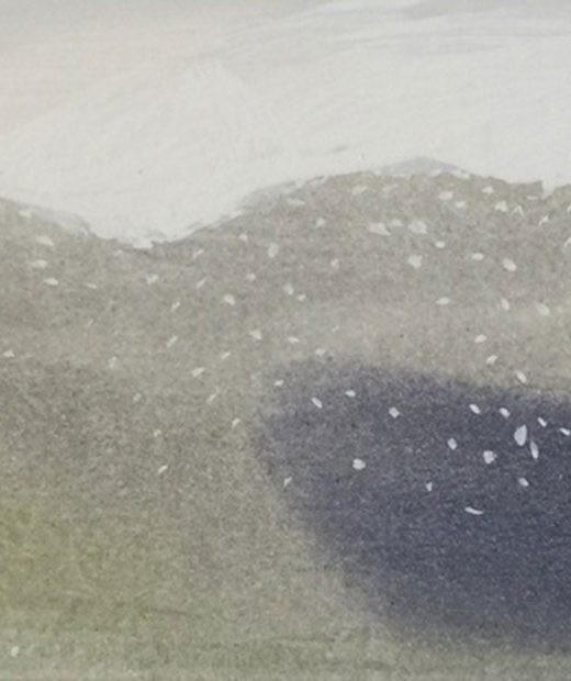 Jardín nevado 10