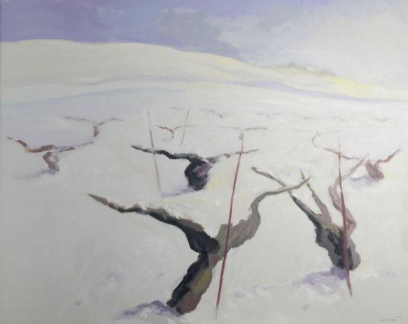 Viñedo invierno 19