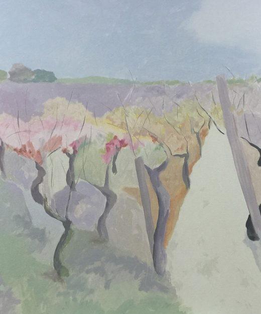 Viñedo otoño 06
