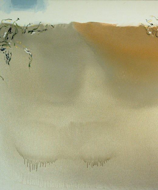 2000-Embalselienzo04-114x146cm